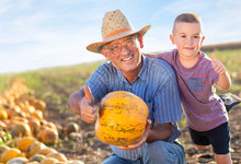 Senior Farmer With His Grandso...