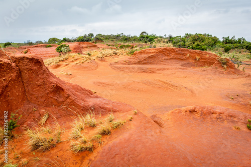 Foto op Canvas Baksteen Landscape of the Red Desert in South Africa