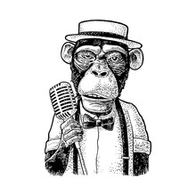 Monkey Dressed Hat, Shirt, Bow...