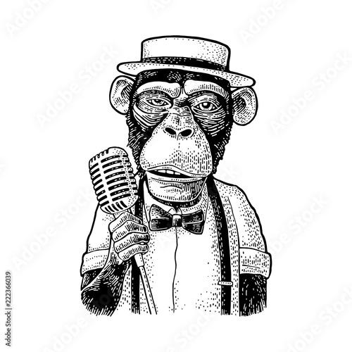 Naklejka premium Kapelusz, koszula, muszka małpa z mikrofonem. Rytownictwo