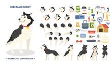 Cute Siberian Husky Dog Animat...