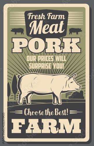 plakat-gospodarstwa-rocznika-miesa-ze-swiniami-hodowanymi-w-gospodarstwie