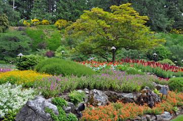 FototapetaColorful botanical garden in summer