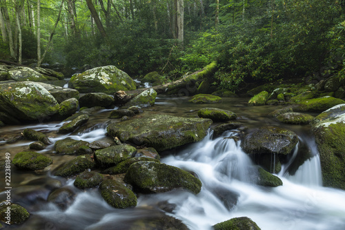 Fototapety, obrazy: Roaring Fork - A creek in the woods with small waterfall in the Smoky Mountains.