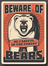 Beware Of Wild Bear Hunting Se...