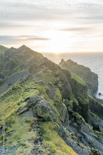 Fotobehang Olijf Iceland landscape and nature in summer