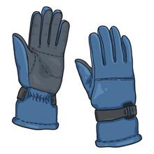 Vector Cartoon Color Illustration - Blue Gloves For Ski