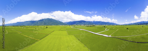 Photo sur Toile Vue aerienne aerial view of rice field valley. taiwan.