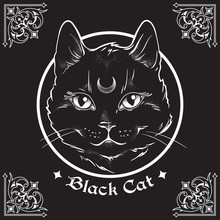 Hand Drawn Black Cat With Moon On His Forehead In Frame Over Black Background And Ornate Gothic Design Elements. Wiccan Familiar Spirit, Pagan Witchcraft Theme Vector Illustration.