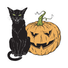 Black Cat Sitting With Halloween Pumpkin Isolated Over White Background Vector Illustration. Witches Familiar Spirit Animal, Gothic Style Card Or Poster Design.