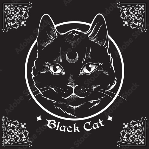 Fotografija Hand drawn black cat with moon on his forehead in frame over black background and ornate gothic design elements