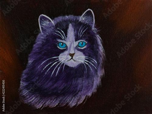 Kot z purpurowym futerkiem przed brown tłem