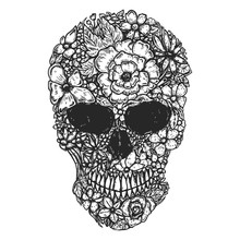 Hand Drawn Human Skull Made Fr...