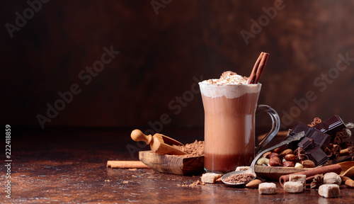 Cocoa with cream, cinnamon, chocolate pieces and various spices.