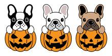 Dog Vector French Bulldog Pumpkin Halloween Icon Logo Illustration Symbol Cartoon