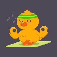 Cute Baby Duck Doing Yoga Exer...