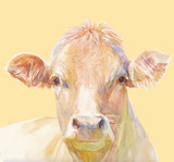 Vector illustration of a watercolor muzzle cow. Cow isolated on ocher background. Frontal head of a cow. - 222441265