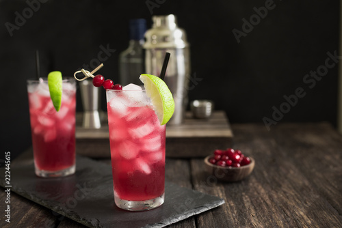 Cranberry Cape Codder Cocktail