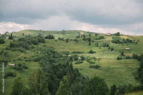 Spoed Foto op Canvas Bleke violet cloudy summer landscape of Carpathian mountains, meadows and sky. Ukraine
