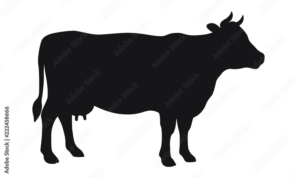 Fototapety, obrazy: Sign cow. Isolated black silhouette cow on white background. Vector illustration