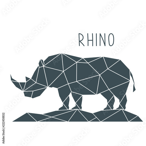 Obraz na plátně Polygonal Rhino Illustration