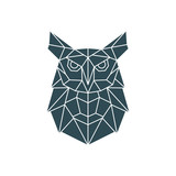 Polygonal Owl Illustration. Geometric pattern with wild bird. Vector design template. - 222459488