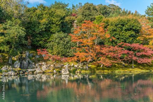Fotografía  Autumn colors at Sogenchi Garden at Tenryu-ji temple