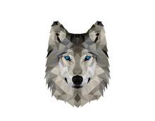 Polygonal Wolv Head Logo Desig...