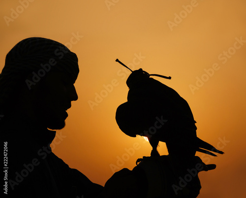 Obraz na plátně silhouette of Arab man with falcon on hunting at sunset in Emirates