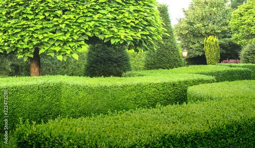 Canvastavla Schöner Ziergarten mit Buchsbaumhecken Bäumen Büschen und Außenbeleuchtung - Bea