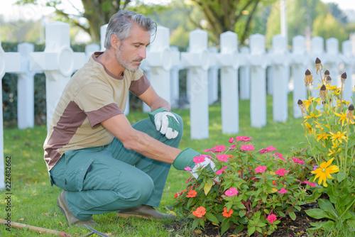 Keuken foto achterwand Begraafplaats Man tending flowers in cemetery