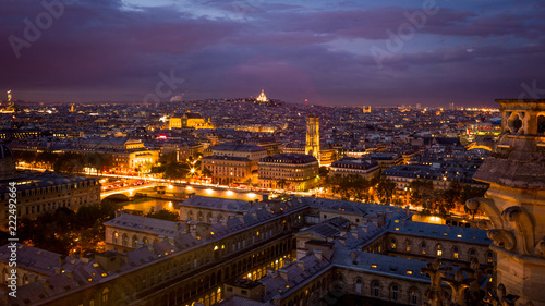 Fotobehang Lavendel Notre Dame