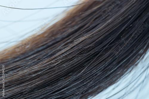 Fotografia, Obraz  Close Up hairline on a white background.
