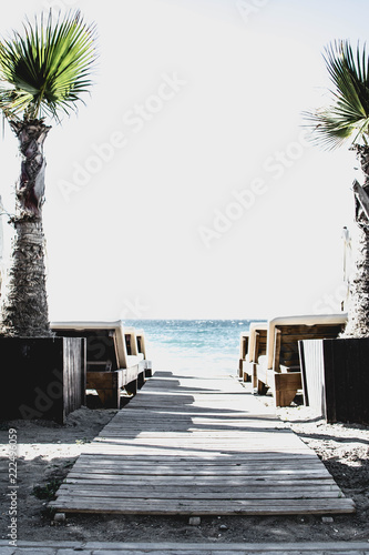 Beach chairs and palm trees on the Mediterranean coast. exotic, calming