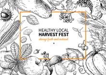 Harvest Festival. Hand Drawn V...