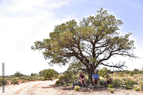 Three female hikers taking break under tree in Canyonlands National Park, Moab, Utah, USA