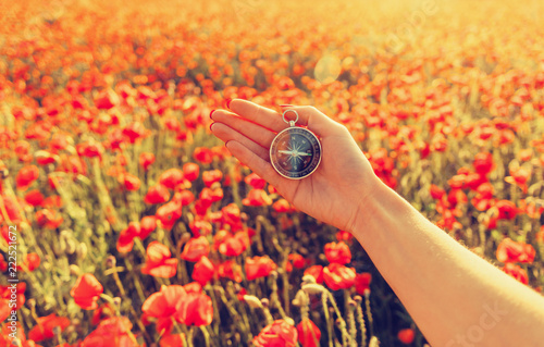 Hand with compass in wildflowers meadow.