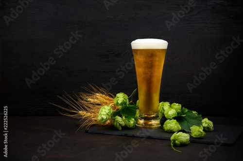 Fotografie, Obraz  Glass of beer with green hops and wheat ears on dark wooden table