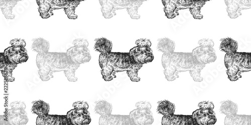 fototapeta na ścianę Seamless pattern with cute puppies of Yorkshire Terrier.