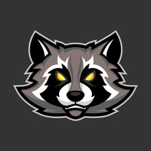 Raccoon Mascot, Sport Or Espor...