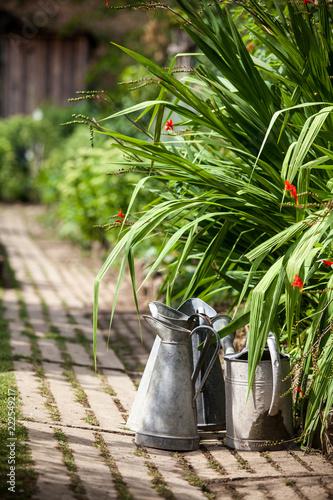 Foto op Plexiglas Tuin jardin potager organique légumes automne saison cabane jardinier