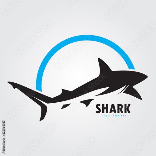 vector shark logo Wallpaper Mural