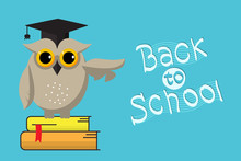 Smart Owl And Back To School H...