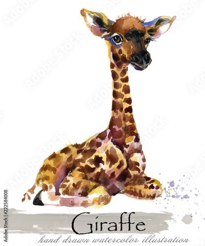 zyrafa-recznie-rysowane-akwarela-ilus