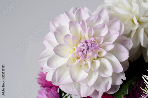 Poster de jardin Dahlia A bouquet of brightly colored chrysanthemums. Floral background