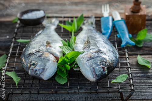 Seasoning whole sea bream with salt and herbs
