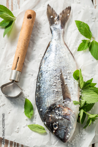 Whole sea bream with salt and herbs on white paper