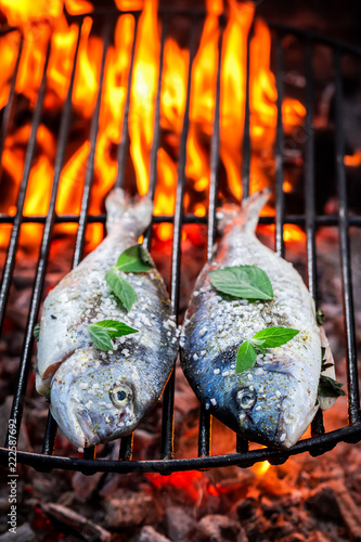 Tasty fish on grill with herbs and salt