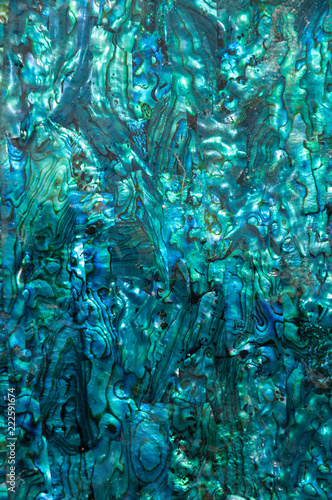 Iridescent blue and green paua, abalone, shell pattern. Wallpaper Mural
