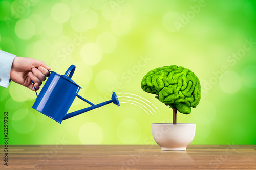 Obraz Creativity and brain function growth - fototapety do salonu